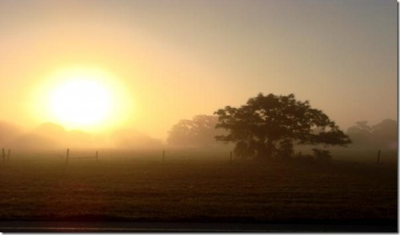 country-morning-sunrise