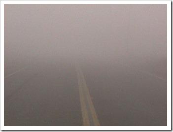 tule_fog